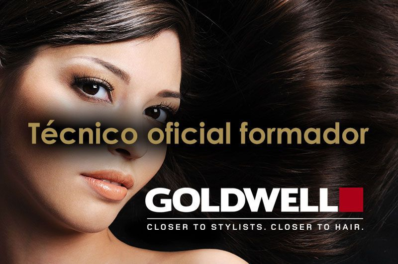 Banner tecnico formador goldwell